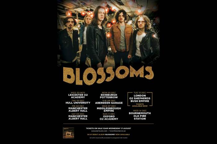 Blossoms Tour Poster