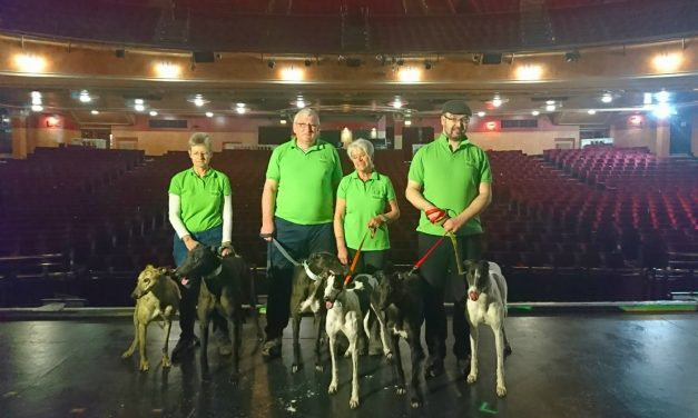 Two rescue greyhounds to feature in Rigoletto at Manchester Opera House