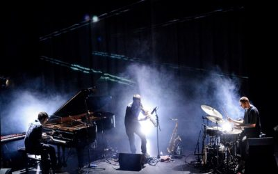 Previewed: Mammal Hands at the RNCM