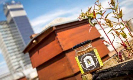 Printworks and Hard Rock Cafe selling Manchester honey for charity
