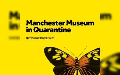 Manchester Museum launches Egyptology in Lockdown Live