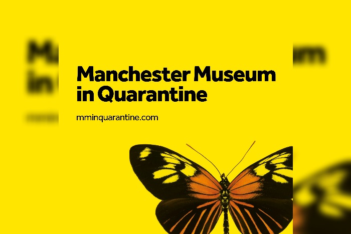Manchester Museum makes exhibitions available online