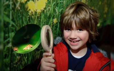 Manchester Museum invites visitors to be inspired by nature